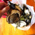 牡蠣まつり